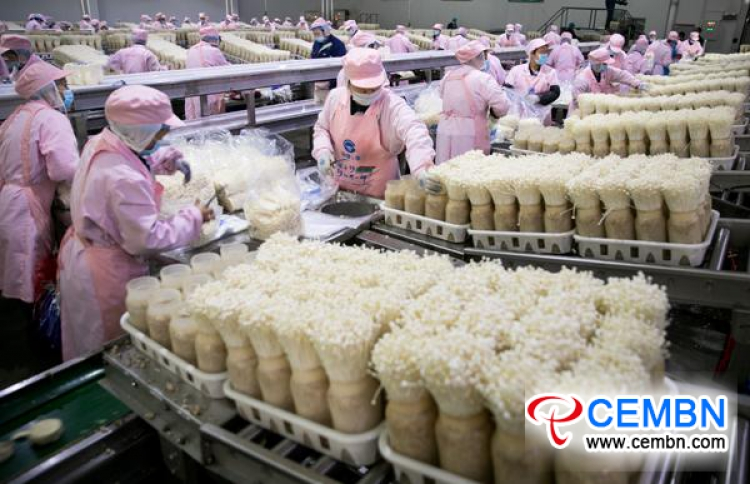 Comprehensive utilization mode of mushroom residues breeds a bright tomorrow