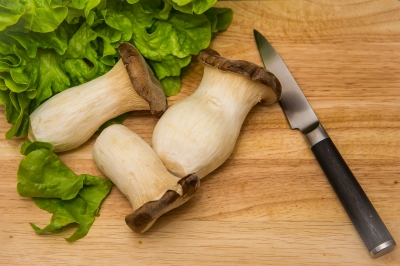 The King Oyster mushroom, a great substitute for meat