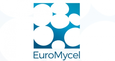 New advertiser EuroMycel on Mushroom Matter