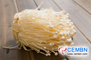 Liaoning Dandong Market: Analysis of Mushroom Price