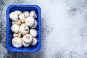 Blue mushroom trays exit
