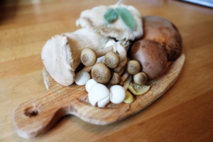 Mushroom varieties offer different health benefits