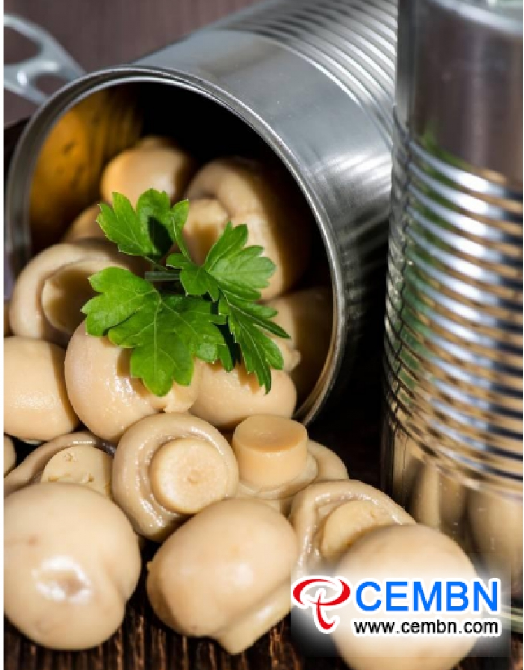 China's Market Development Scale of Canned Mushroom Industry in 2018