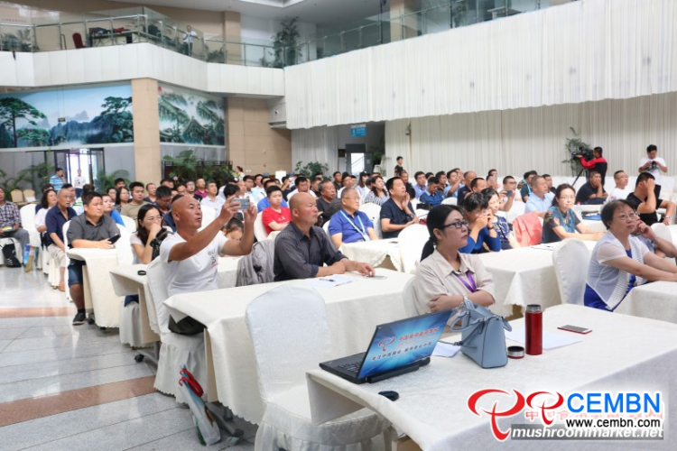 Authoritative roadshow reports issued on National Black Fungus Meeting catch high attention
