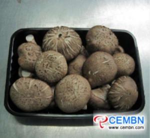Guangdong Province of China: Market Analysis of Mushroom Price