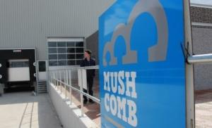 Mush Comb turns 25!