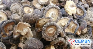 Situation on Production & Sales Market and Export Trade of Shiitake Mushroom in China
