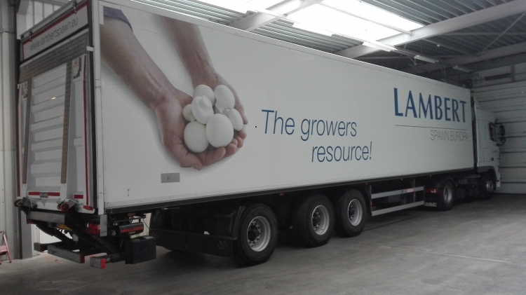 First European production site for Lambert Spawn