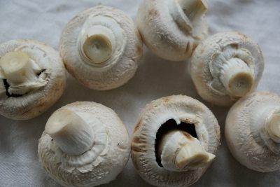 Mushrooms are full of antioxidants that may have anti-aging potential
